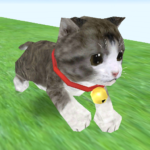 Cat Run (Mod) 50