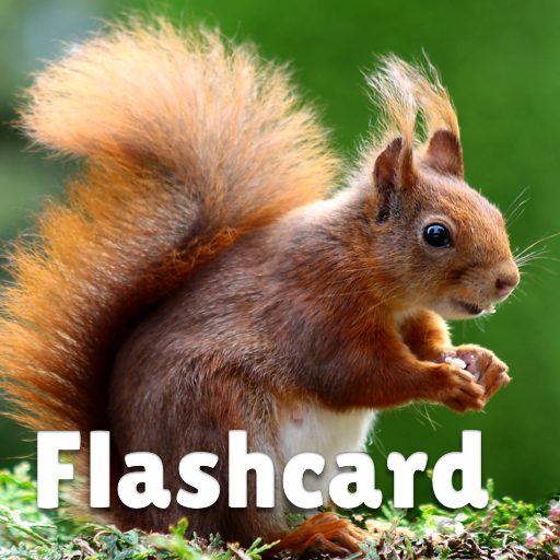 Animal flashcard & sounds for kids & toddlers (Mod) 2020.24