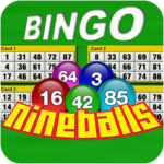 Nine Balls Video Bingo (Mod) 2.11