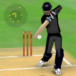 Smashing Cricket – a cricket game like none other (Mod) 3.0.8