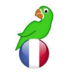 Learn French from scratch (MOD Premium Cracked) 19.7